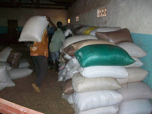 loading maize the local staple food into our store ready for distribution
